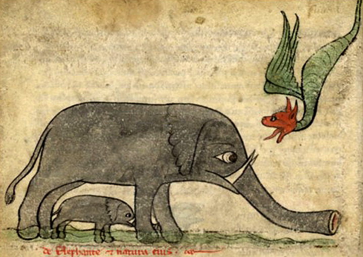 Medieval Drawing of Elephants