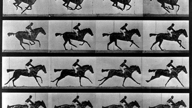 chevaux-muybridge-sos-photos-traitement-image-retouche-editing-prise-de-vue