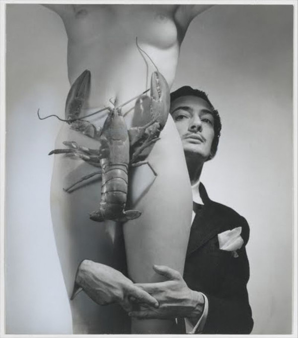 Dali and the Lobster Crotch