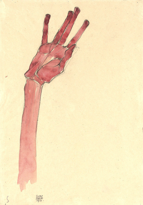 Egon Schiele, The Hand, private collection