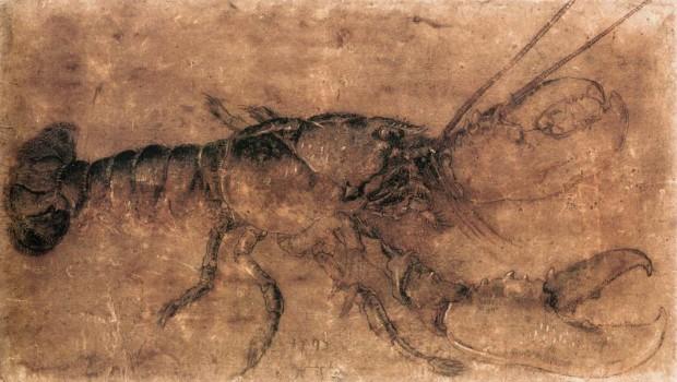 Albrecht Durer, A lobster, 1495, Staatliche Museen, Berlin