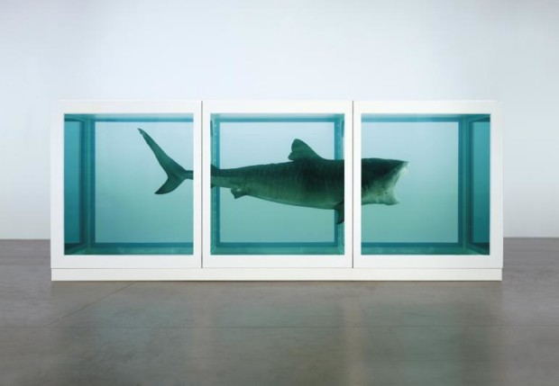 Damien Hirst SharkDamien Hirst, The Physical Impossibility of Death in the Mind of Someone Living, 1991