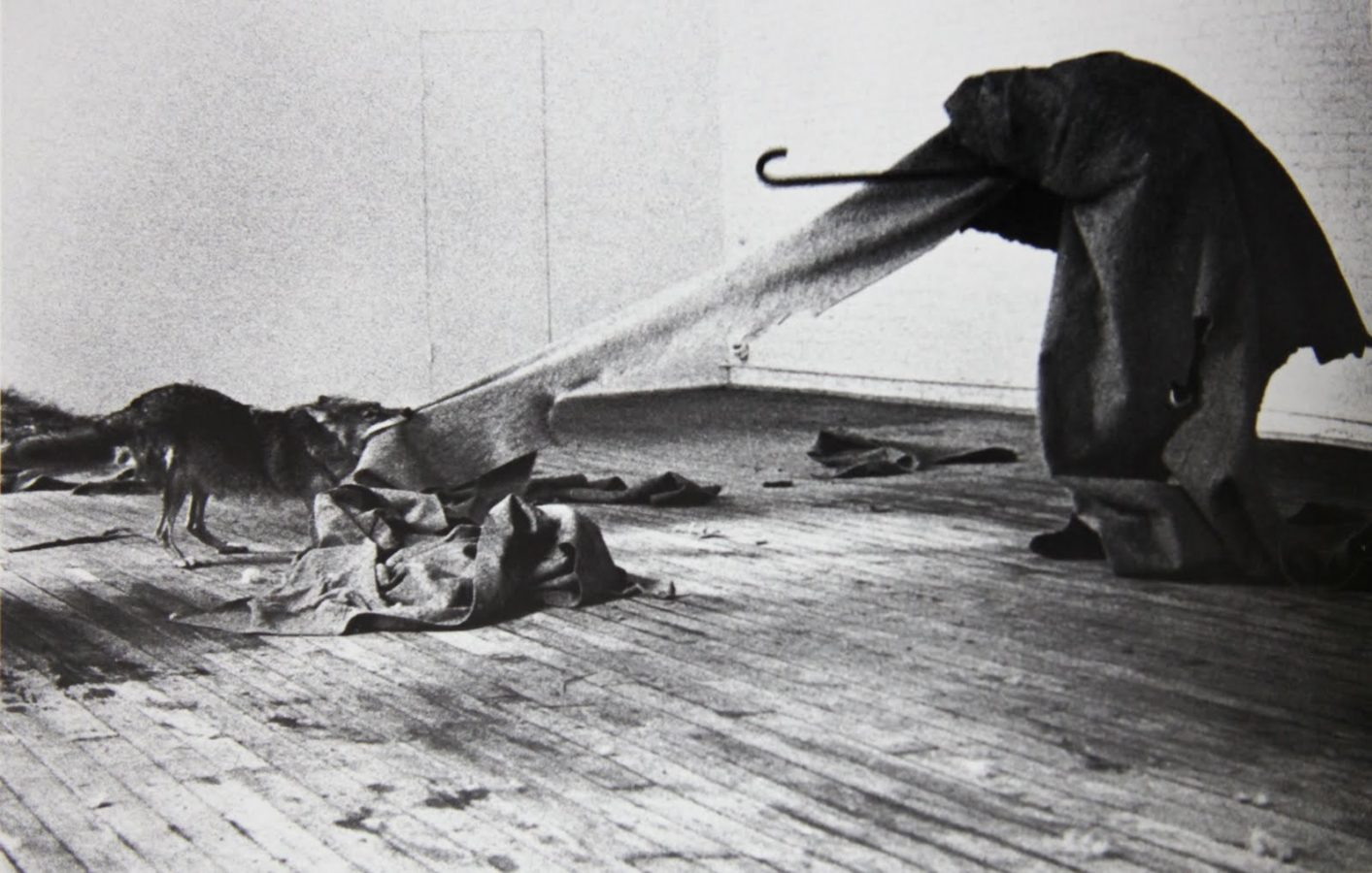 Joseph Beuys, I like America and America Likes Me, 1974, photo by Caroline Tisdall, most important works by joseph beuys