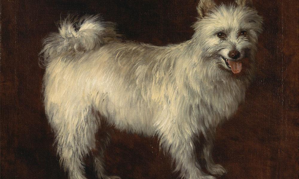 Thomas Gainsborough, The Spitz Dog, ca 1765, Yale University Art Gallery - spitz, pomeranian