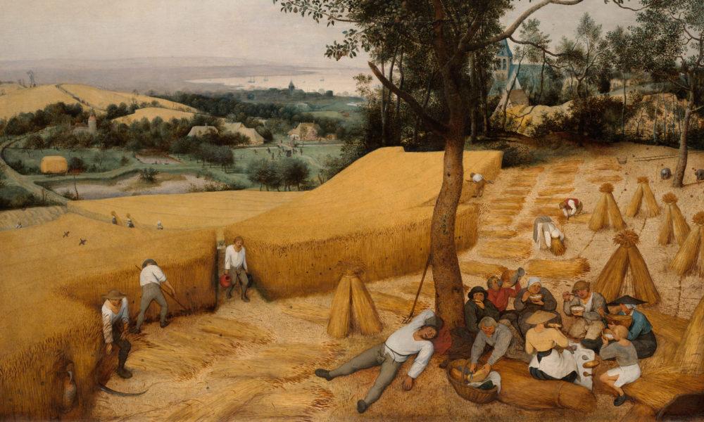 Harvest in Art