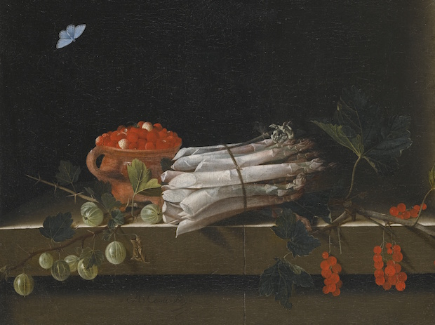 Adriaen Coorte, Life of an earthenware bowl of wild strawberries, a bundle of asparagus and springs of gooseberry and redcurrants, all on stone ledge with a pale blue butterfly above, 1689