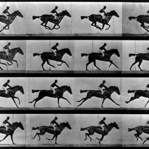 chevaux-muybridge-sos-photos-traitement-image-retouche-editing-prise-de-vue