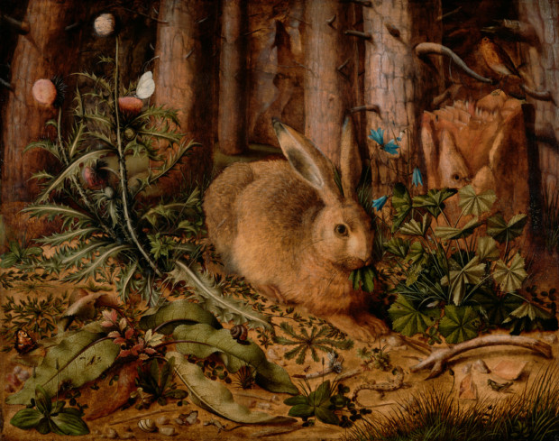 Hans Hoffmann, A Hare in the Forest, about 1585, J. Paul Getty Museum