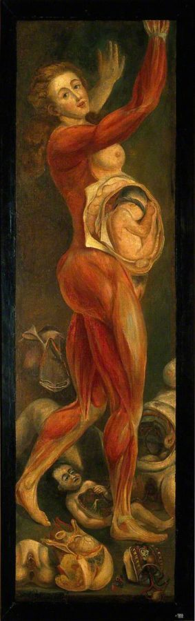 A dissected pregnant female, 1764/5, Jacques-Fabien Gautier D'Agoty (1717-1785), Wellcome Library, London, History of medicine in art