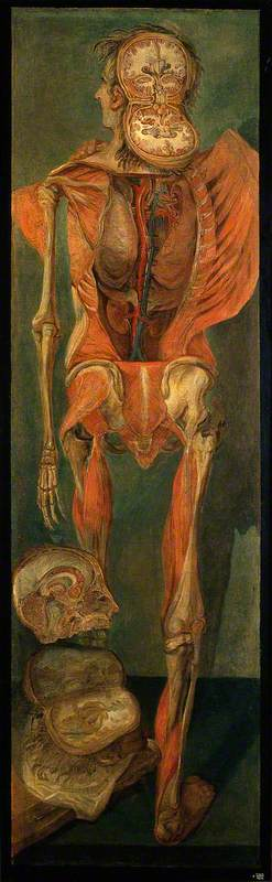 A dissected man with a separate section of viscera, Jacques-Fabien Gautier D'Agoty (1717-1785), Wellcome Library, London, History of medicine in art
