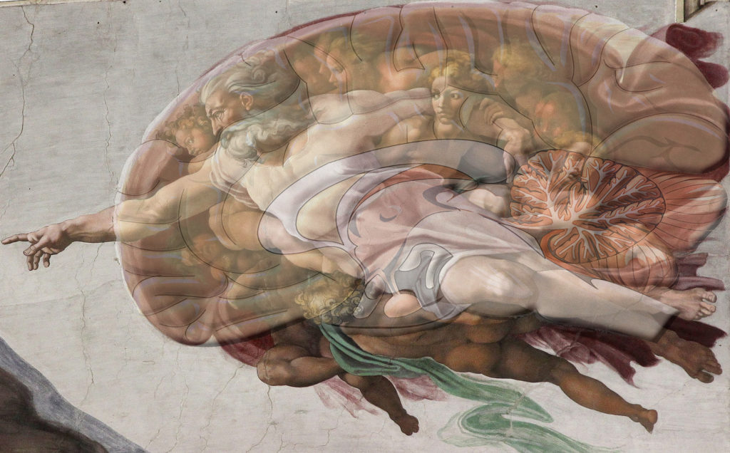 "God in ""The Creation of Adam"" and a human brain. Source: http://lcmspastor.com/"