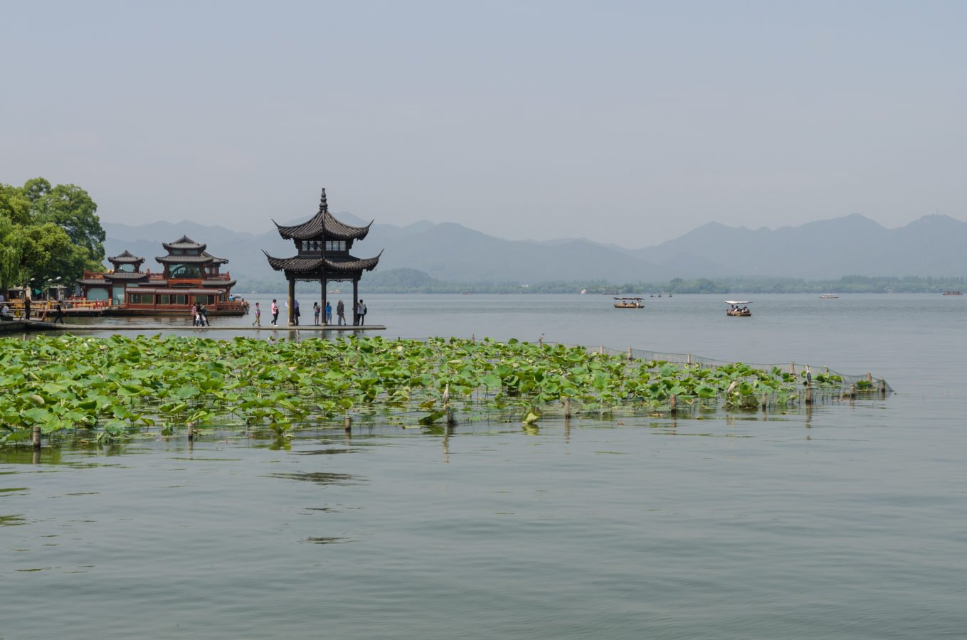 West Lake Pavilion and Water Lilies, Hangzhou