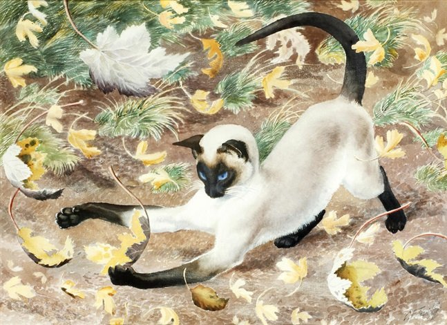 Autumn Kitten cats by Charles Frederick Tunnicliffe