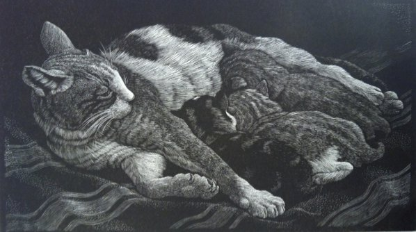 Cat and Kittens cats by Charles Frederick Tunnicliffe