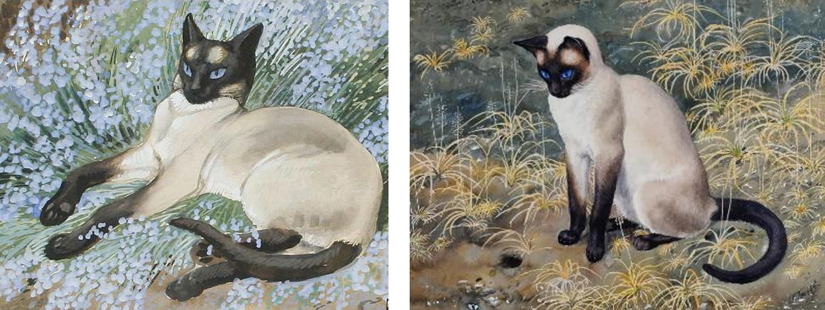 Siamese Cats cats by Charles Frederick Tunnicliffe