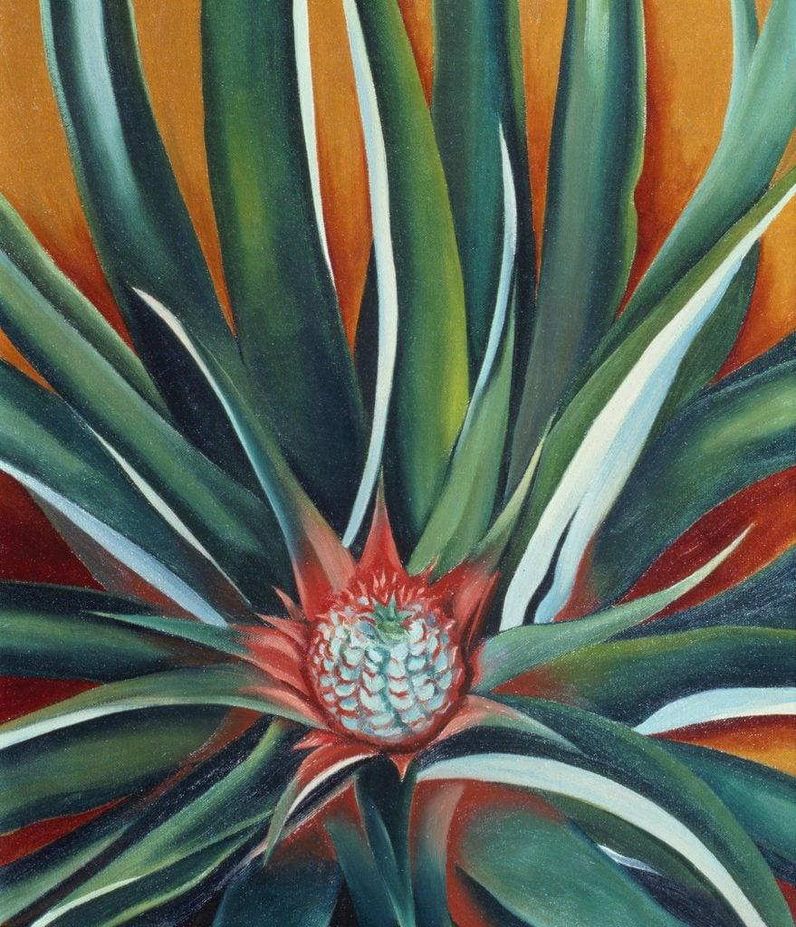 Georgia O'Keeffe, Pineapple Bud (1939). Courtesy of a private collection. Georgia in Hawaii