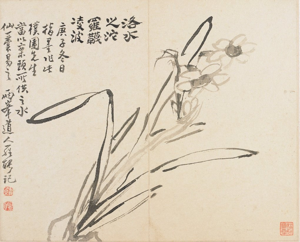 Luo Ping, Landscapes, Flowers and Birds: Narcissus, ink on paper, 1780, detail, Freer Gallery Of Art, Washington