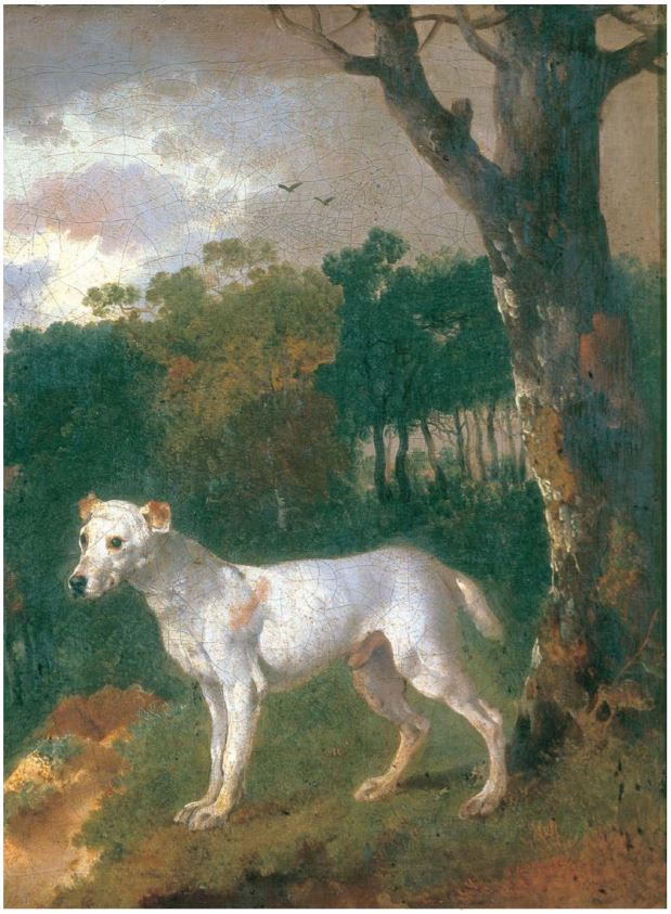 Thomas Gainsborough, Bumper – A Bull-Terrier, 1745, private collection - dogs' portraits