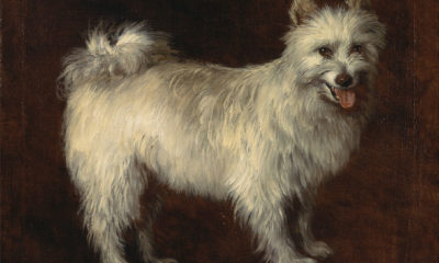 Thomas Gainsborough, The Spitz Dog, ca 1765, Yale University Art Gallery - spitz, pomeranian