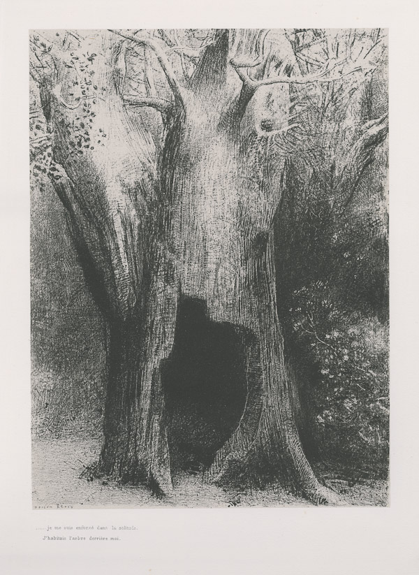 Odilon Redon, I plunged into solitude. I dwelt in the tree behind me (plate 9) from La Tentation de Saint-Antoine 1896, published 1938, solitude in painting