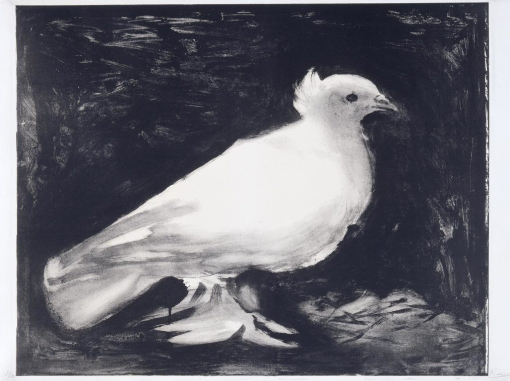 Pablo Picasso, Dove, 1949, Tate Gallery, © Succession Picasso - DACS 2018 - Twelve Days of Christmas