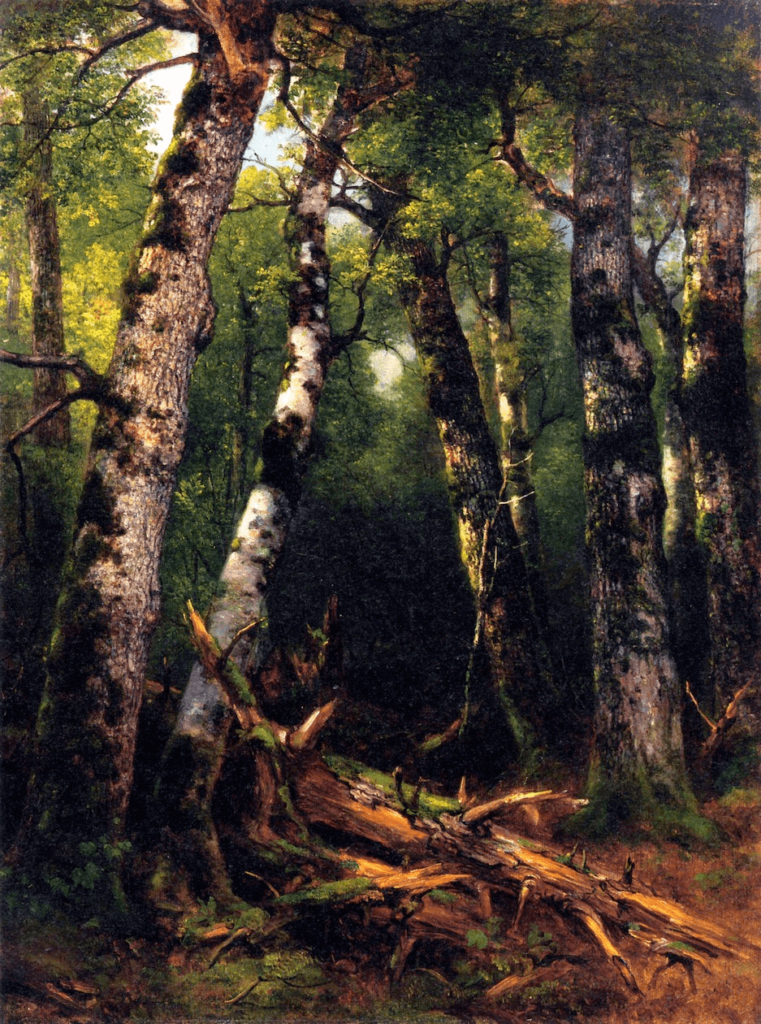 Group of Trees Hudson River School