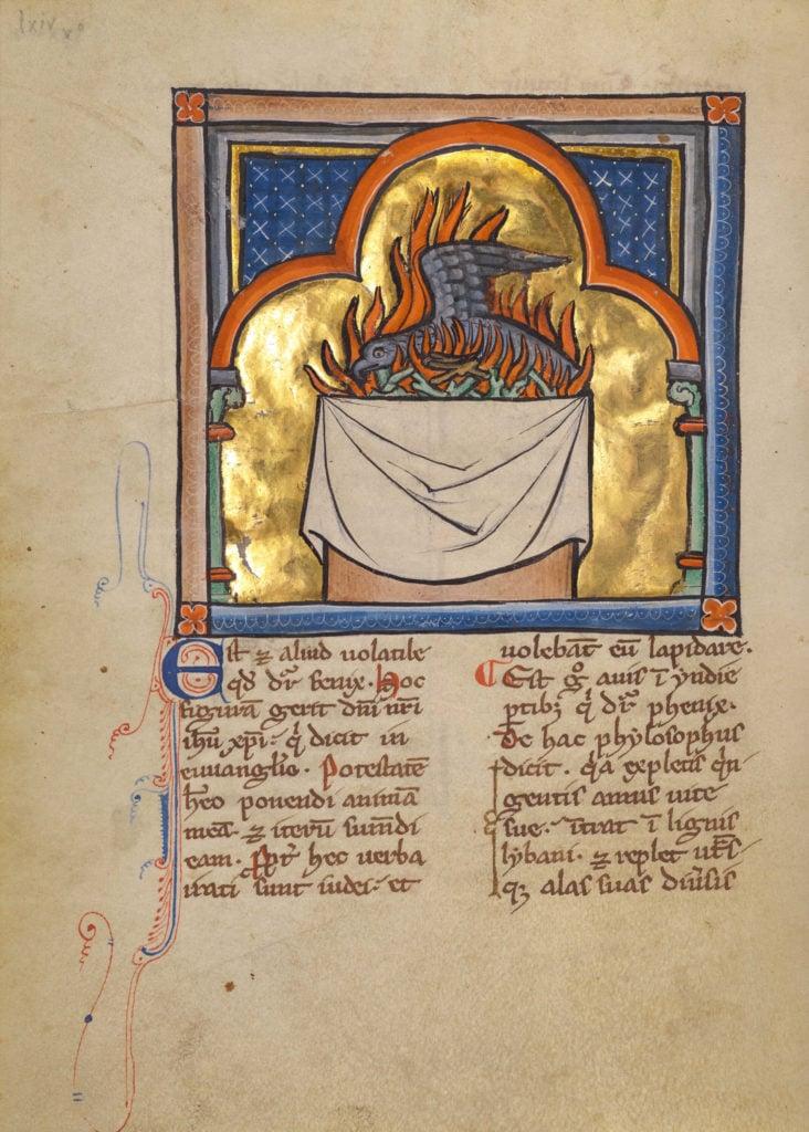 medieval bestiary phoenix