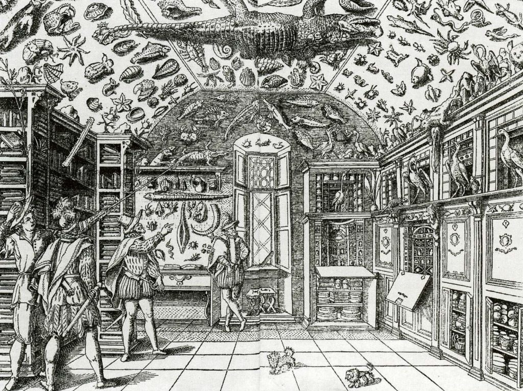 Ferrante Imperato, Room of curiosities. Source: www.wunderkammer.at