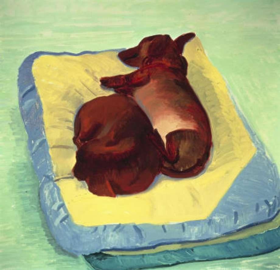 Sleeping dogs, David Hockney