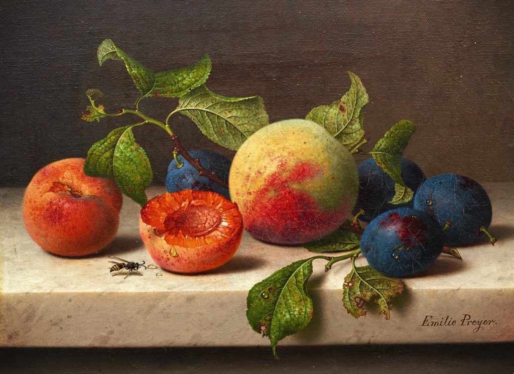 the perfect meal for a summer day, the painting of still-life with fruit, apricots and berries with a wasp Emilie Preyer, Still life with fruit