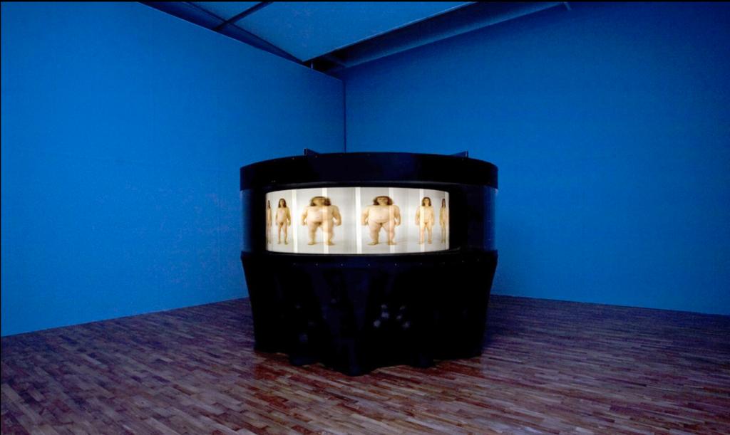 Yishay Garbasz, Becoming, installation at the Busan Biennale