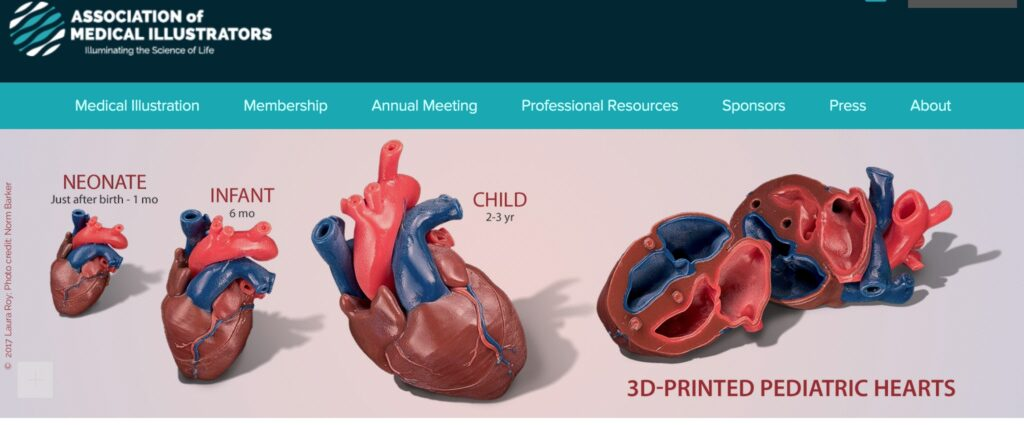 Screenshot from the page of the Association of Medical Illustrators