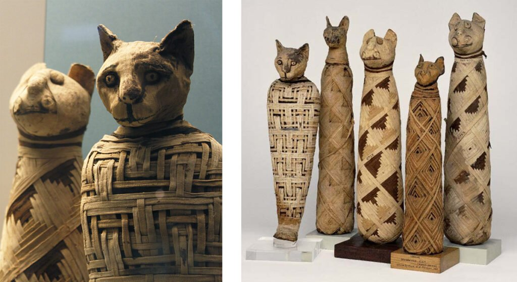 Sacred Cats in Ancient Egypt Cat Mummies at the British Museum