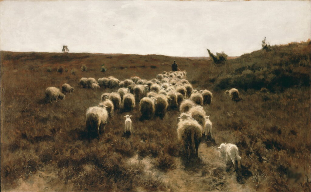 Davies Sisters collection: Huw Wynstan Jones, The Return of the Flock