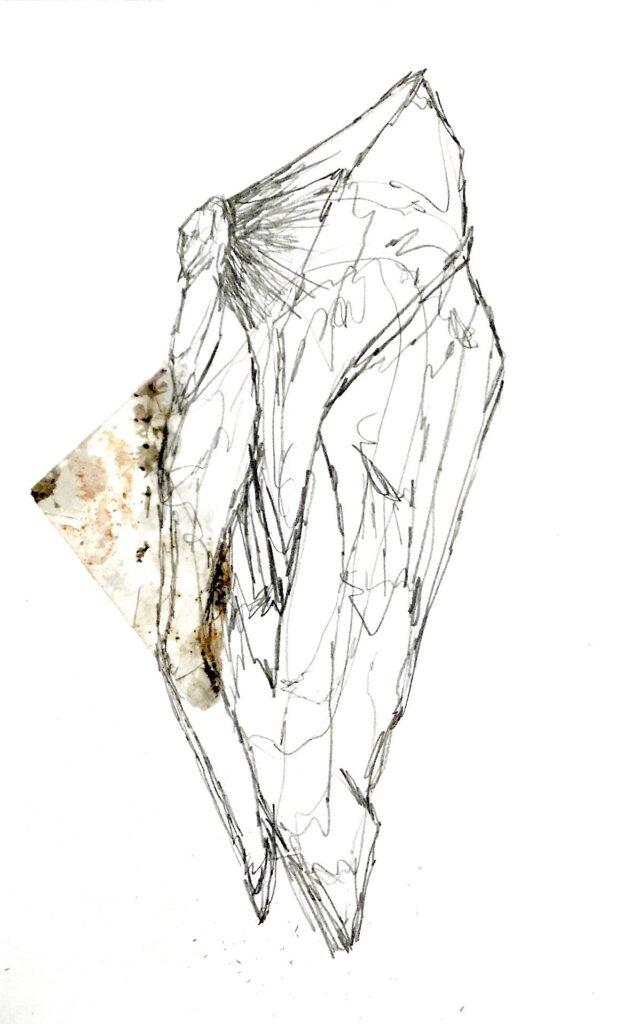 Sara Osebold, Back to Granite