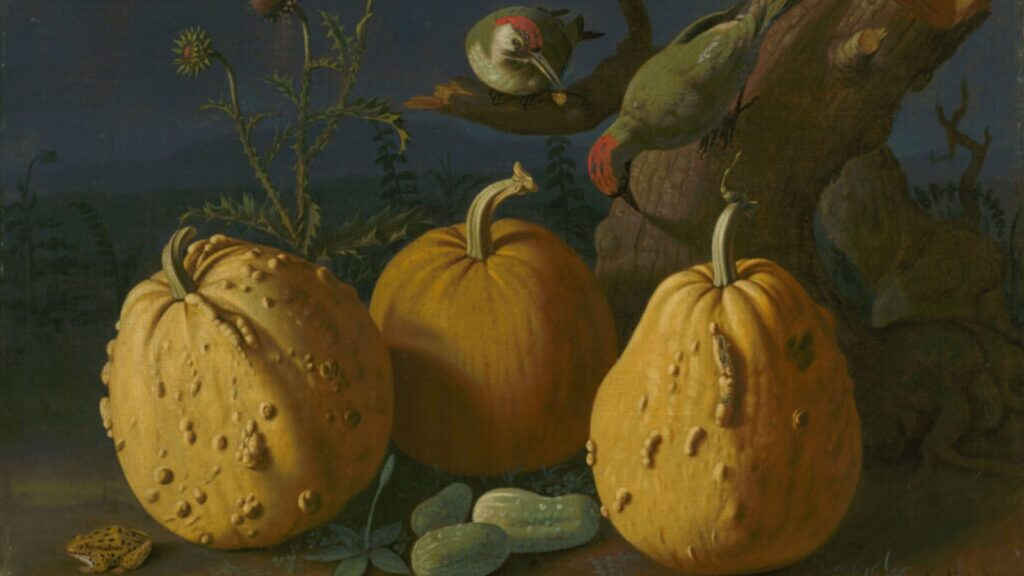 Still Life with Pumpkins and Cucumbers cover