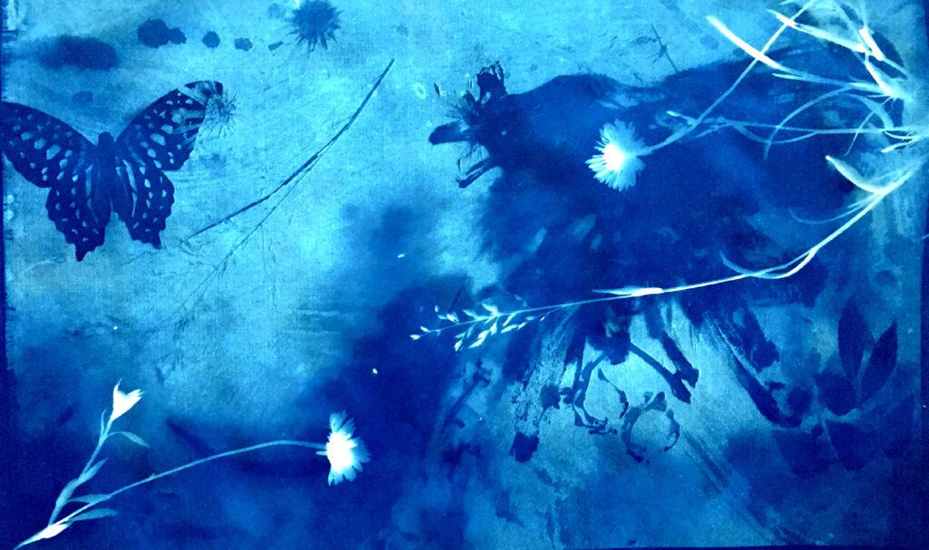 Anita Yan Wong, Blue bird