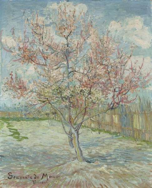 Pink Peach Trees, Van Gogh, Spring, Kröller-Müller