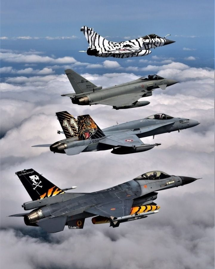 NATO Tigers in formation. Source: www.natotigers.org.