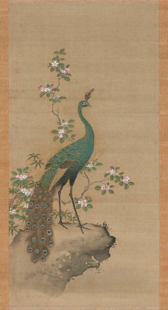 Kiyohara Yukinobu, Peacock and Peach Blossom