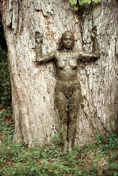 where is ana mendieta Ana Mendieta, The Tree of Life
