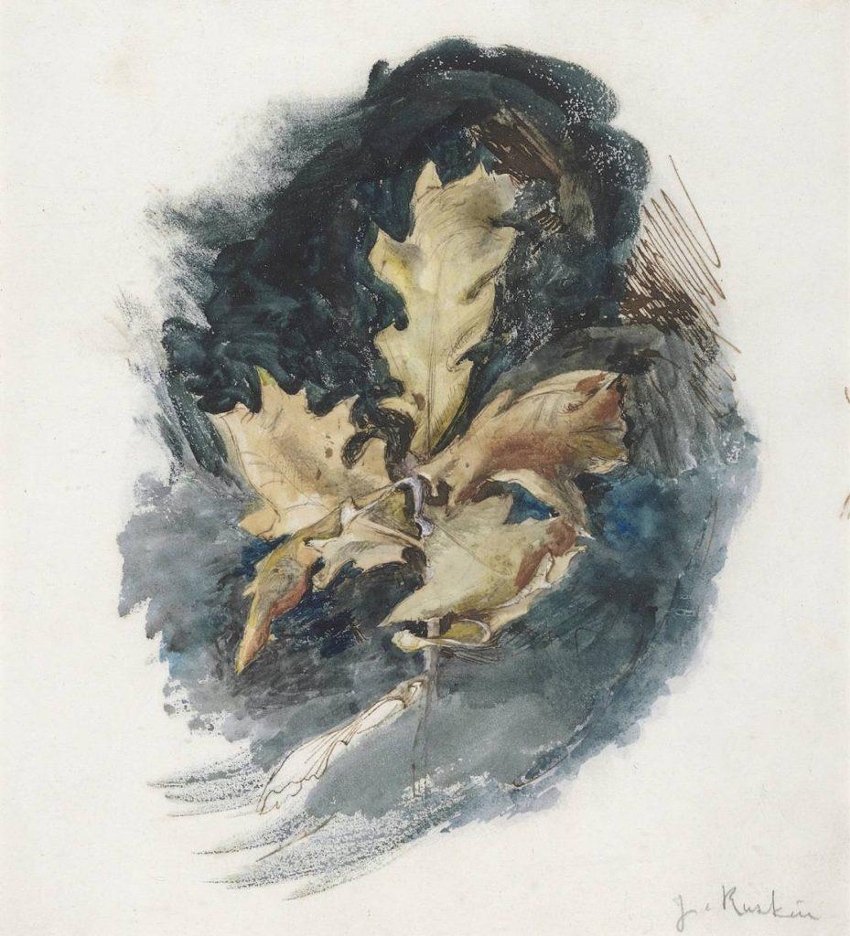 John Ruskin, Study of an oak leaf