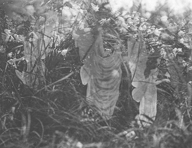 Elsie Wright & Frances Griffiths, Fairies and Their Sun-Bath, 1917, Cottingley