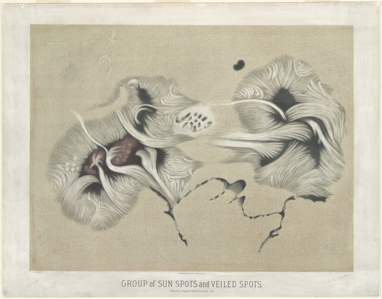 astronomical art: Étienne Léopold Trouvelot, Group of Sunspots and Veiled Spots, As Observed on June 17, 1875 at 7.30am
