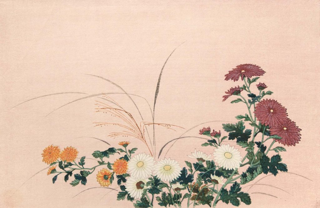 Tosa Mitsuoki, Chrysanthemums, reproduction prin, Fullerton College Music Department collection.
