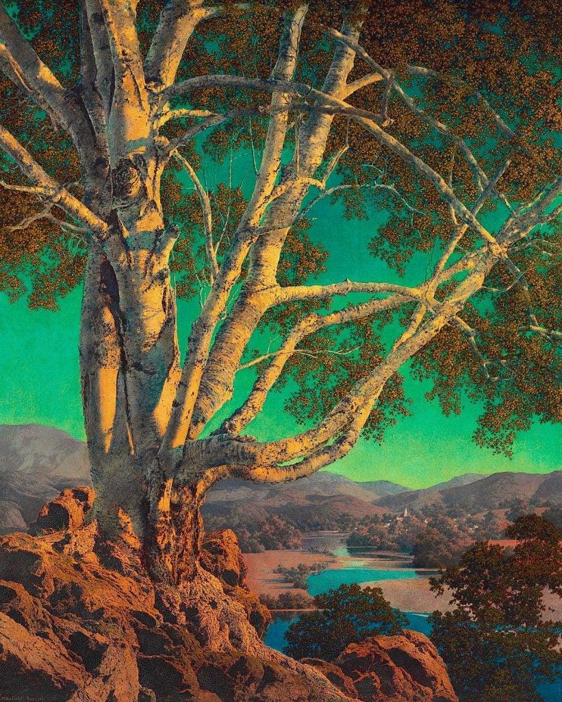 Maxfield Parrish, Old White Birch, ca. 1937, private collection