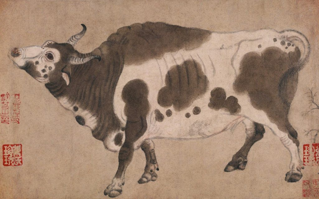 five oxen, detail with the ox stretching its neck