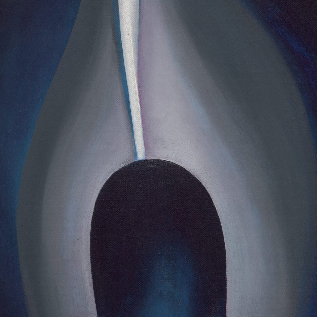 Georgia O'Keeffe, Jack-in-the-Pulpit No. IV, 1930, National Gallery of Art, Washington DC, USA. Enlarged Detail of Spadix.
