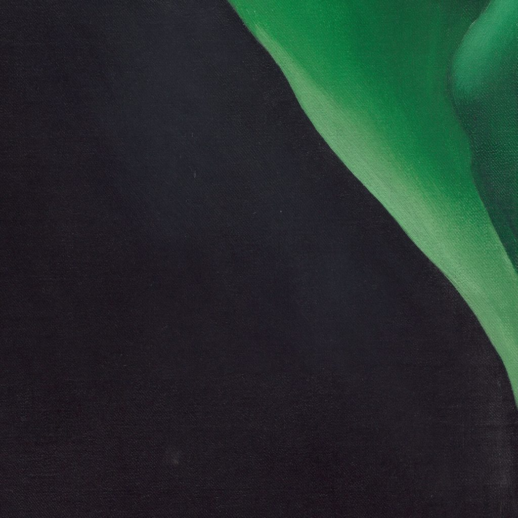 Georgia O'Keeffe, Jack-in-the-Pulpit No. IV, 1930, National Gallery of Art, Washington DC, USA. Enlarged Detail of Spathe.