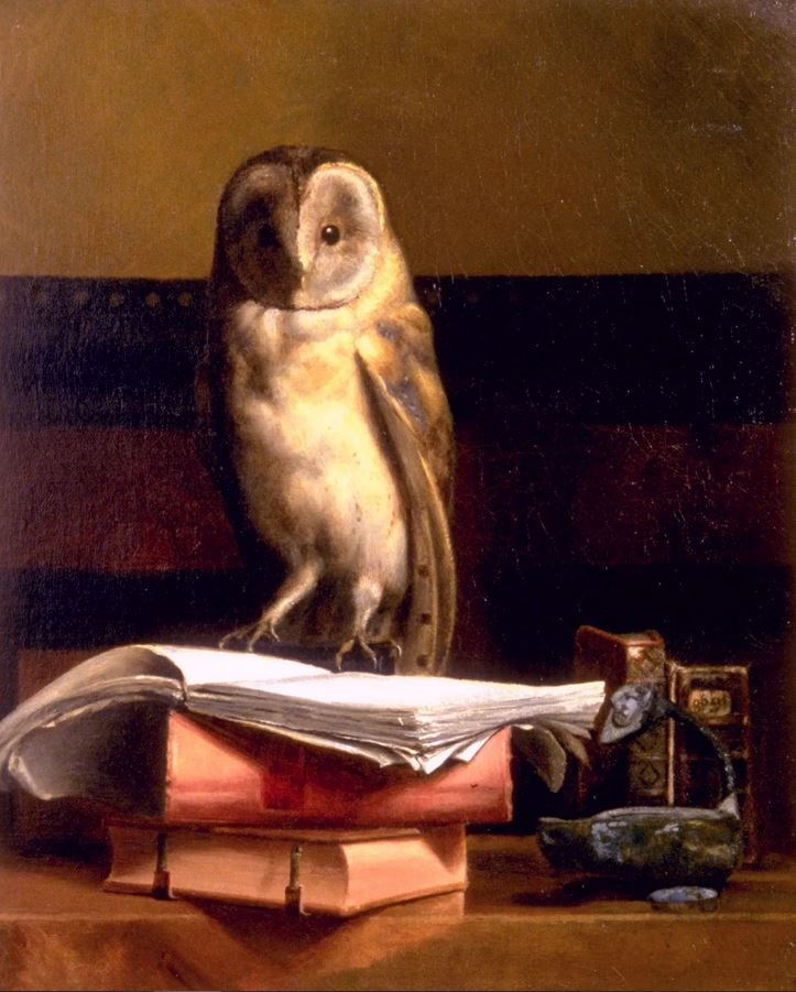 Lucky star May Alcott Nieriker, Still life with Owl, 1879, Orchard House, Concord, Massachusetts.